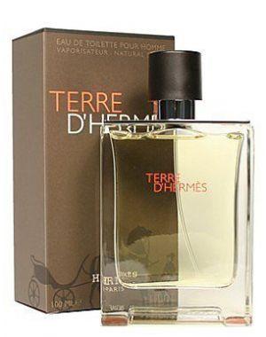 Hermes - Terre D'Hermes EDT 100ml Spray For Men